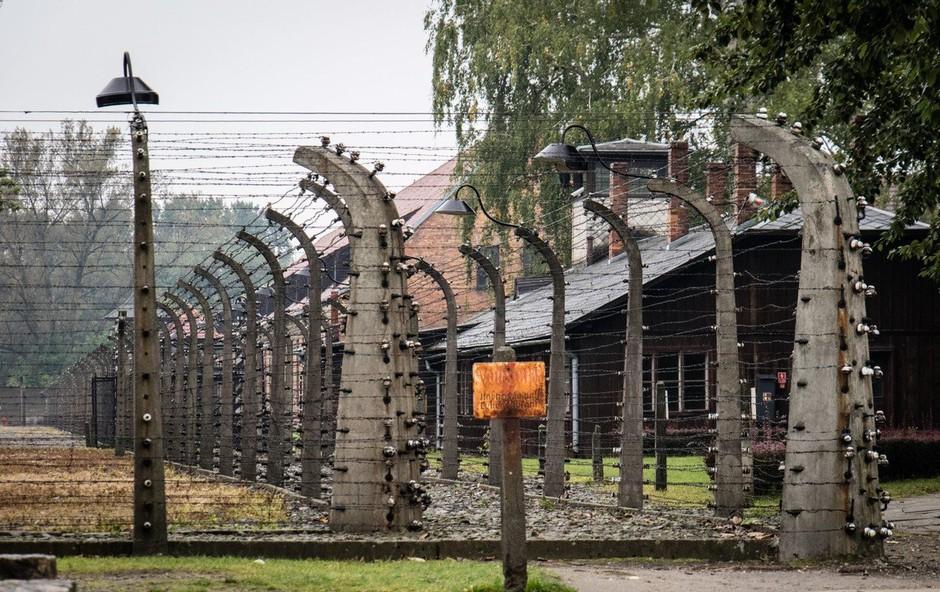 Auschwitz: Dan spomina na žrtve nacističnega genocida nad Romi (foto: profimedia)