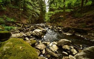 Truplo od jeseni pogrešanega Italijana našli v strugi potoka Koren