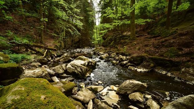 Truplo od jeseni pogrešanega Italijana našli v strugi potoka Koren (foto: profimedia)