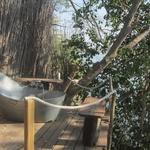 V kampu Ngepi lahko občudujete dogajanje v reki kar iz kopalne kadi. (foto: Foto: Osebni Arhiv)