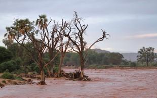 V poplavah v kenijskem nacionalnem parku tudi mrtvi, med njimi več turistov!
