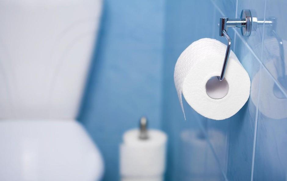 Britanci lahko v primeru brexita ostanejo celo brez toaletnega papirja (foto: Profimedia)
