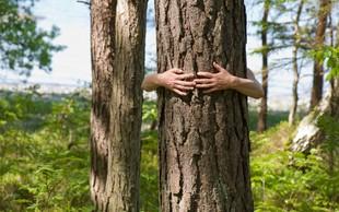 Rudi Beiser o tem, kako se srečati z božansko energijo drevesa!