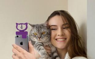 Raziskava pokazala, da se mačke navežejo na ljudi tako kot psi - v nekaterih primerih še bolj!