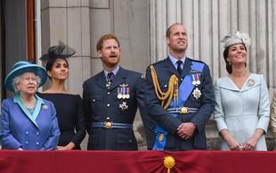 Nekaj stvari, ki jih mogoče niste vedeli o kraljevi družini