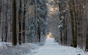 Horoskopska znamenja, ki naravnost obožujejo zimo in mraz