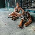 Pogumna Nina Donelli brez strahu ob pravi zverini, ki bi jo imela kar doma