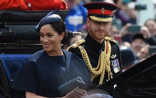 Poglejte si, kaj je  hišna pomočnica princa Harryja in Meghan Markle za njiju nakupila v supermarketu