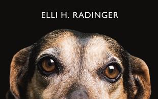 Elli H. Radinger, avtorica uspešnice Modrost volkov, prihaja v Slovenijo!