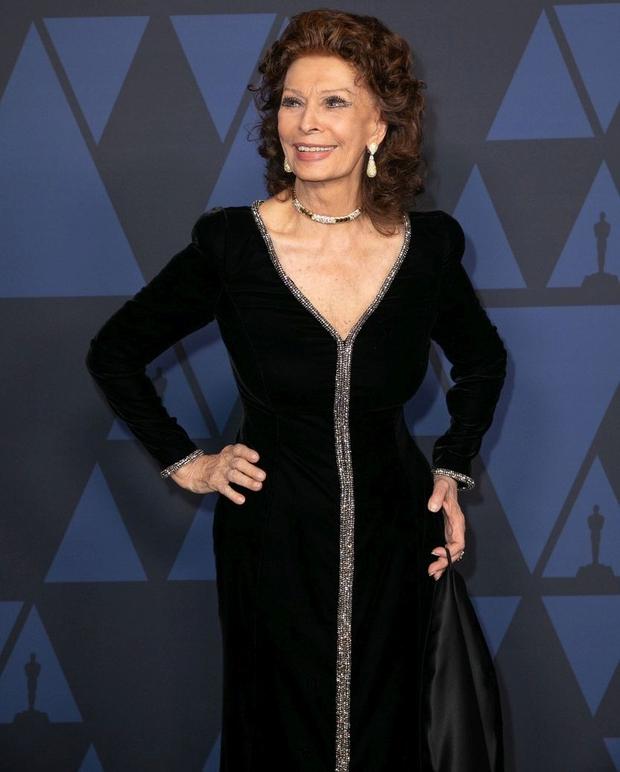 Italijanska oskarjevka Sophia Loren se pri 85 letih vrača na filmska platna (foto: Profimedia)