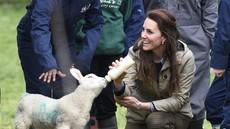Poglejte si, kam je Kate Middleton pretekli konec tedna odpeljala otroke