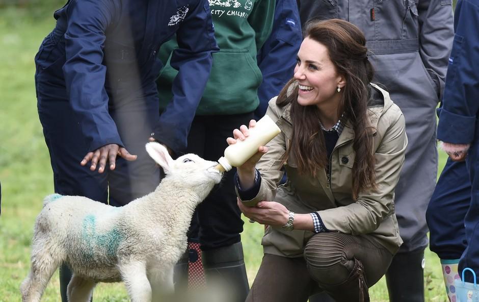 Poglejte si, kam je Kate Middleton pretekli konec tedna odpeljala otroke (foto: Profimedia)