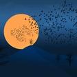 Šamanska astrologinja Gaia Asta opozarja, da je situacija s koronavirusom resna in da zdaj še bolj velja ostati v izolaciji