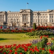 Ogled Buckinghamske palače letos ne bo možen zaradi koronavirusa