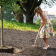 Zaradi rožnega vrta Melanio Trump primerjajo z Marijo Antoaneto