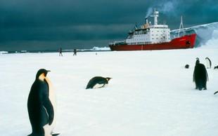 Po karanteni smo postali tako socialno anksiozni, kot bi prišli z odprave na Antarktiki