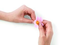 Vas zanima izdelava papirnatega cvetja? Spoznajte ustvarjalko, ki ohranja našo kulturno dediščino!