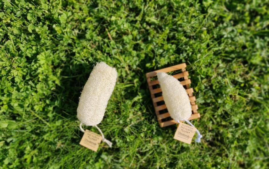 Jasmina Avbar za družbo brez odpadkov: Iz buče lahko izdelamo naravno in biorazgradljivo gobico! (foto: Foto: Oa)