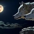Lunin ritual, ki prinaša vse, kar si želite