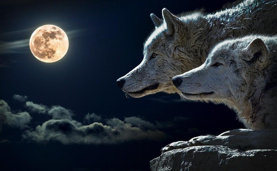 Lunin ritual, ki prinaša vse, kar si želite (foto: Pixabay)
