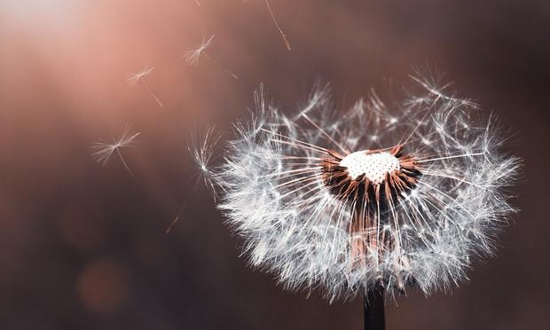 """Astrologinja Mihaela Malečkar napoveduje: """"Soočali se bomo s pasivno agresijo in manipulacijami."""" (foto: Pixabay)"""