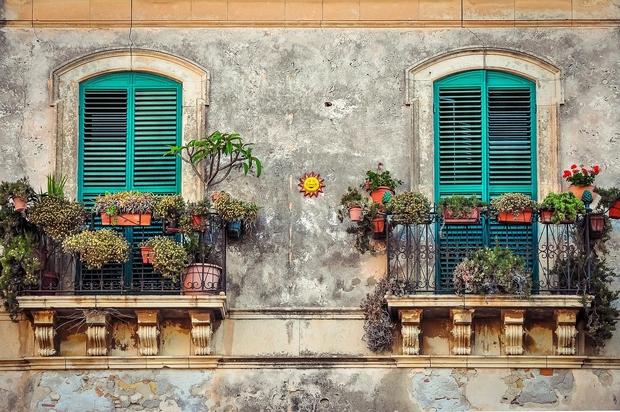 Z zunanjimi rastlinami polepšajte balkon, teraso ali vhod v stanovanje (foto: Pixabay)