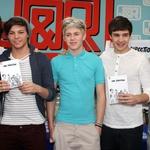 Harry Styles, Liam Payne, Niall Horan, Louis Tomilson in Zayn Malik so bili člani noro popularne skupine One Direction. (foto: Foto: Nancy Kaszerman)