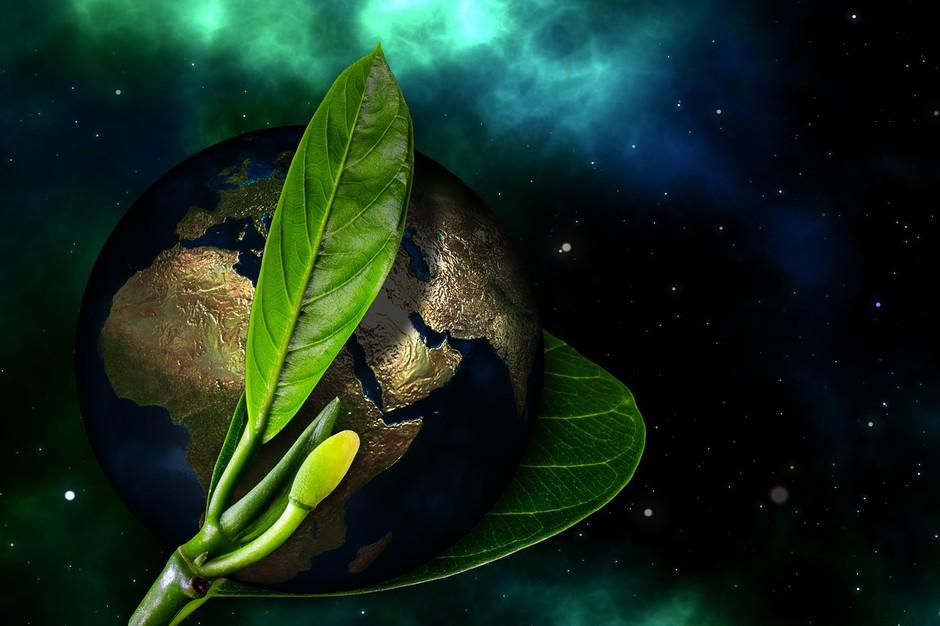 Energijska napoved: Svet se na novo rojeva (foto: Pixabay)